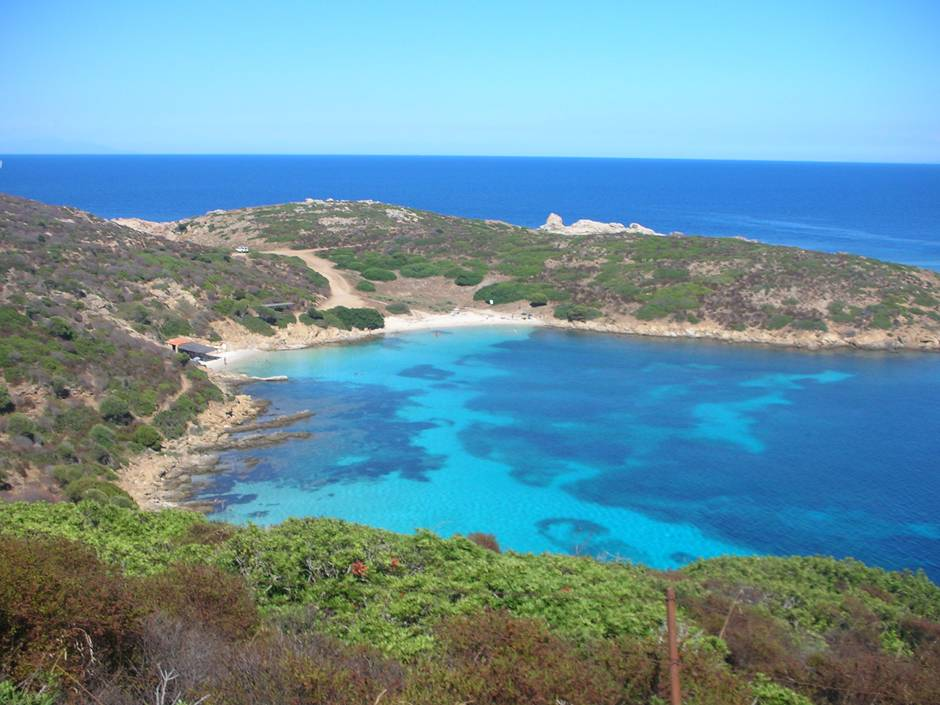 Where to go in Sardinia? Asinara, for sure!