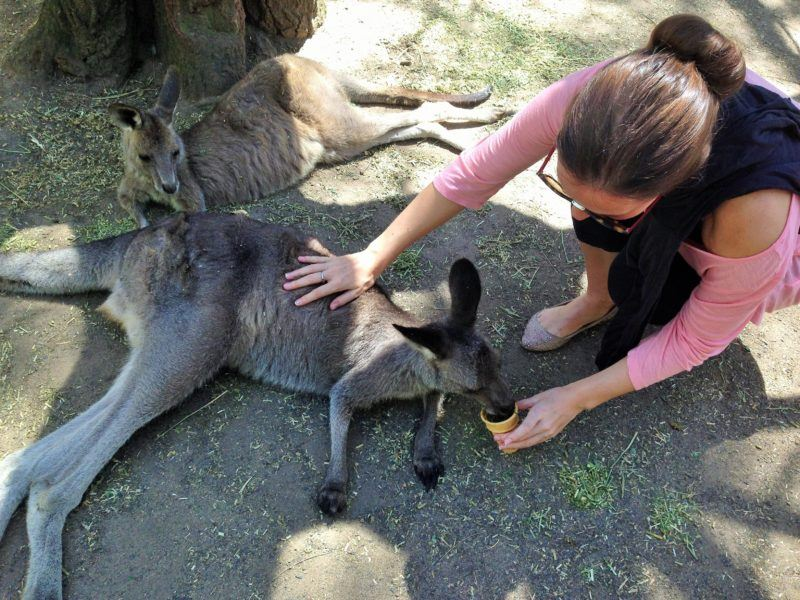 Responsible tourism in Australia